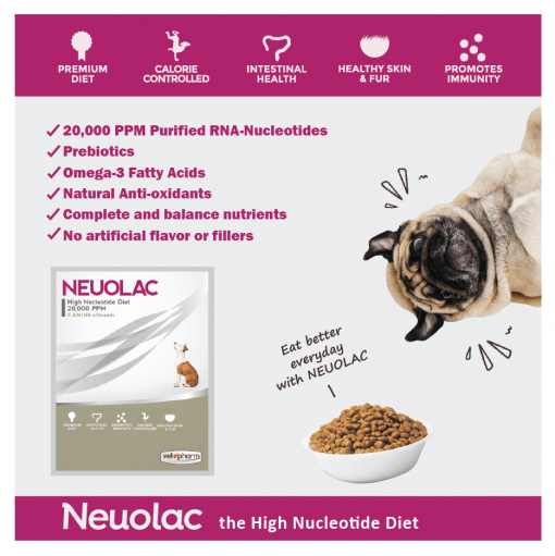 Neuolac High Nucleotide Diet